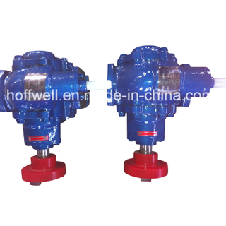 Cast Iron Motor Driven External Gear Pump for Fuel Oil