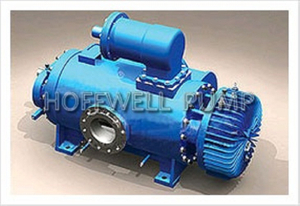 Horizontal &amp Vertical2W. W Twin Screw Pump