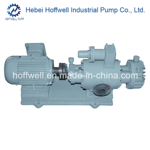 CE Approved 2W. W Fuel Oil Twin Screw Pump