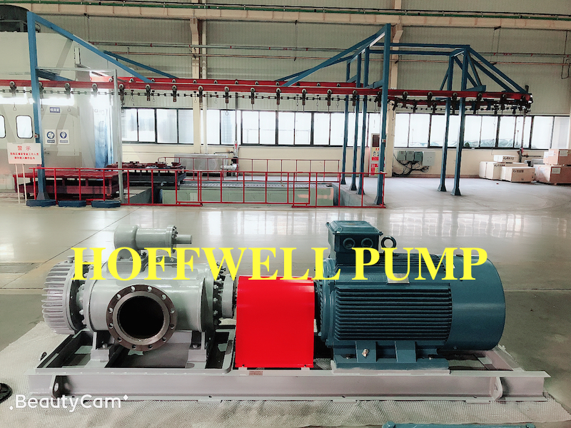 2W.W6.9 twin screw pump