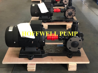 Cast Iron Rotary External Gear Pump For Grease