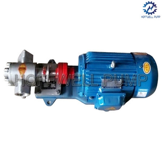 Stainless Steel KCB55 Vegetable Oil External Gear Pump