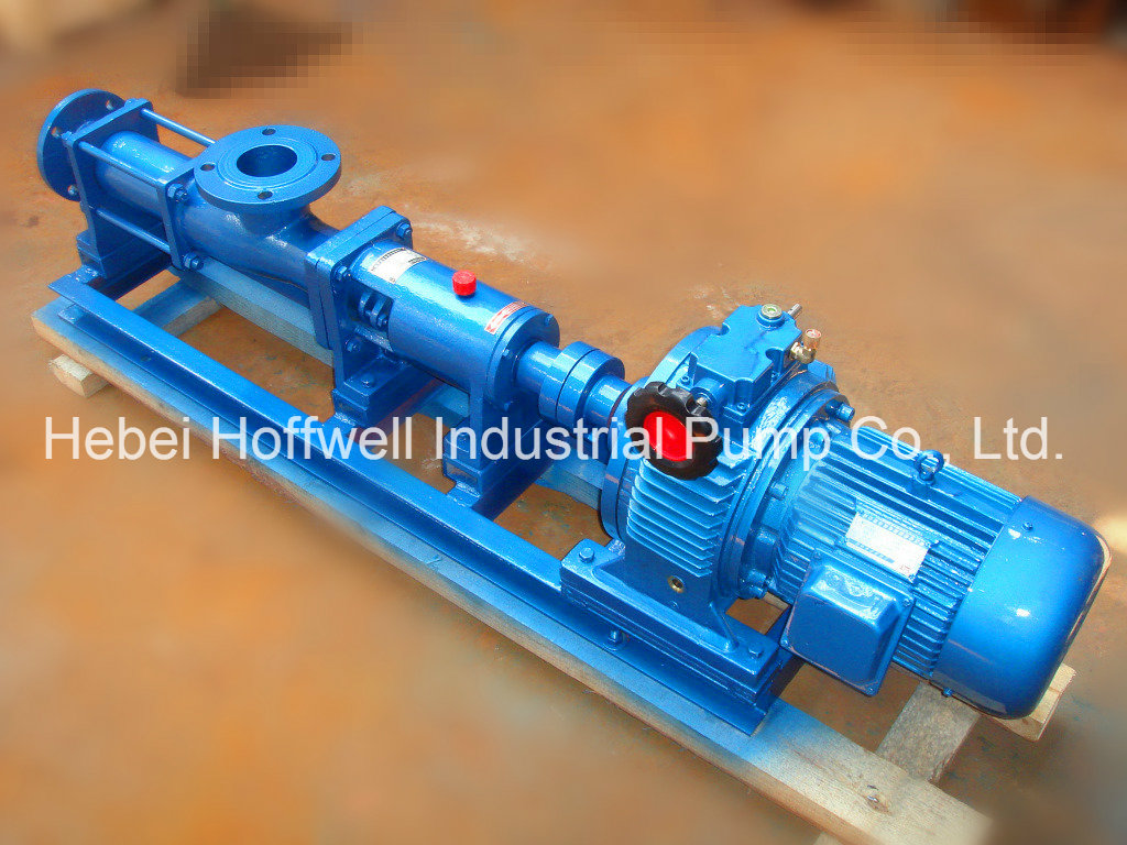 CE Approved G Slurry Mono Single Screw Pump