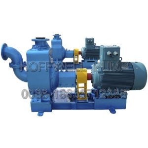 CYZ self-priming centrifugal gasoline pump