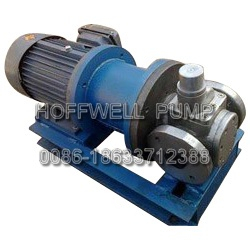 Cast Iron Magnetic Drive External Gear Pump for Oil