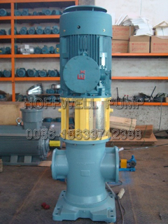 3GL Vertical Double Suction Triple Three Screw Pump for Liquid